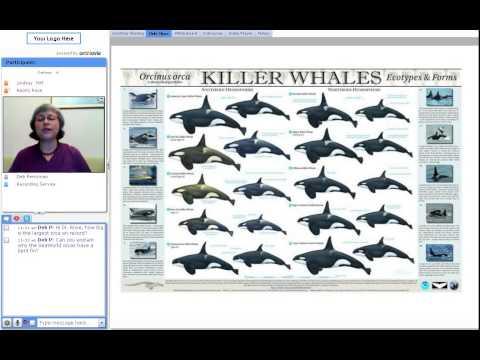 Dr. Naomi Rose National Biodiversity Teach In