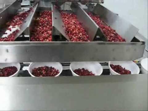 Pomegranate arils packing by Hefestus SLB  YouTube