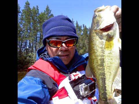 Bass Fishing Near Eugene