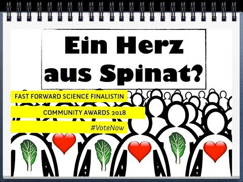 Ein Herz aus Spinat - aktuelle Medizinforschung - Fast Forward Science 2018