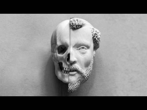 8 Scientific Theories About Death