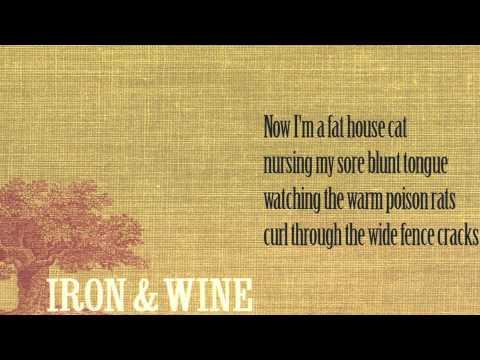 Flightless bird American mouth - Iron & Wine ➤ Lyrics Video