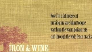Flightless bird American mouth - Iron & Wine ➤ Lyrics Video