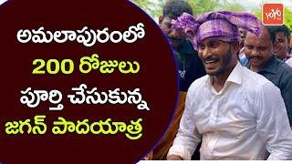 YS Jagan Padayatra Reaches 200 Days at East Godavari Amalapuram | PrajaSankalpa Yatra | YOYO TV NEWS