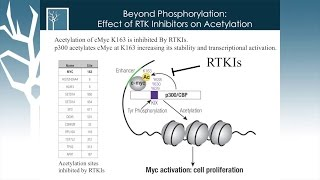 Mapping Signaling Networks in Cancer Phosphorylation and Beyond