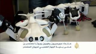 تطوير روبوت بالاعتماد على الجهاز العصبي للسلمندر
