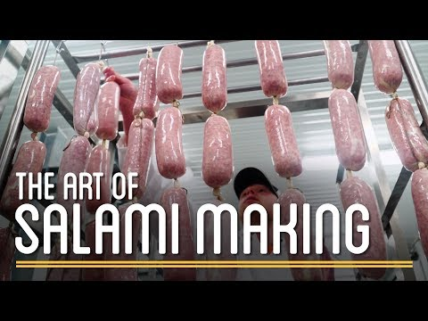 The Art of Salami Making   How to Make Everything: Preservatives