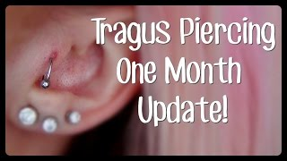 Tragus Piercing One Month Update   Hypertrophic Scarring!