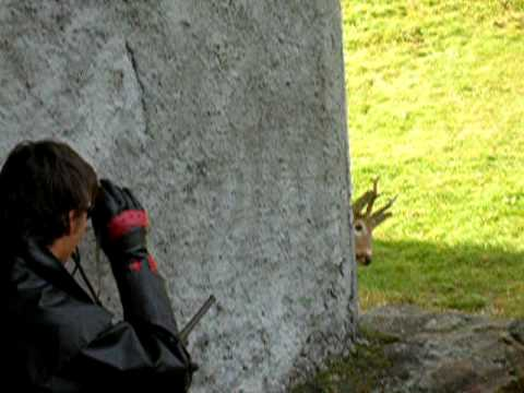 Jagd in val sumvitg