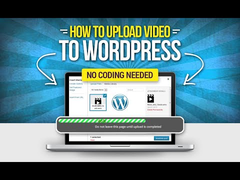 How To Embed Videos and Live Streaming to Your WordPress Website