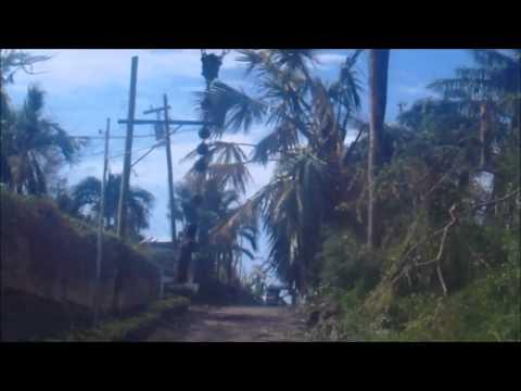 Northern Cebu (Bogo City)