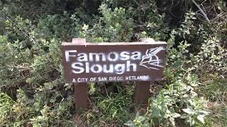 Famosa Slough San Diego