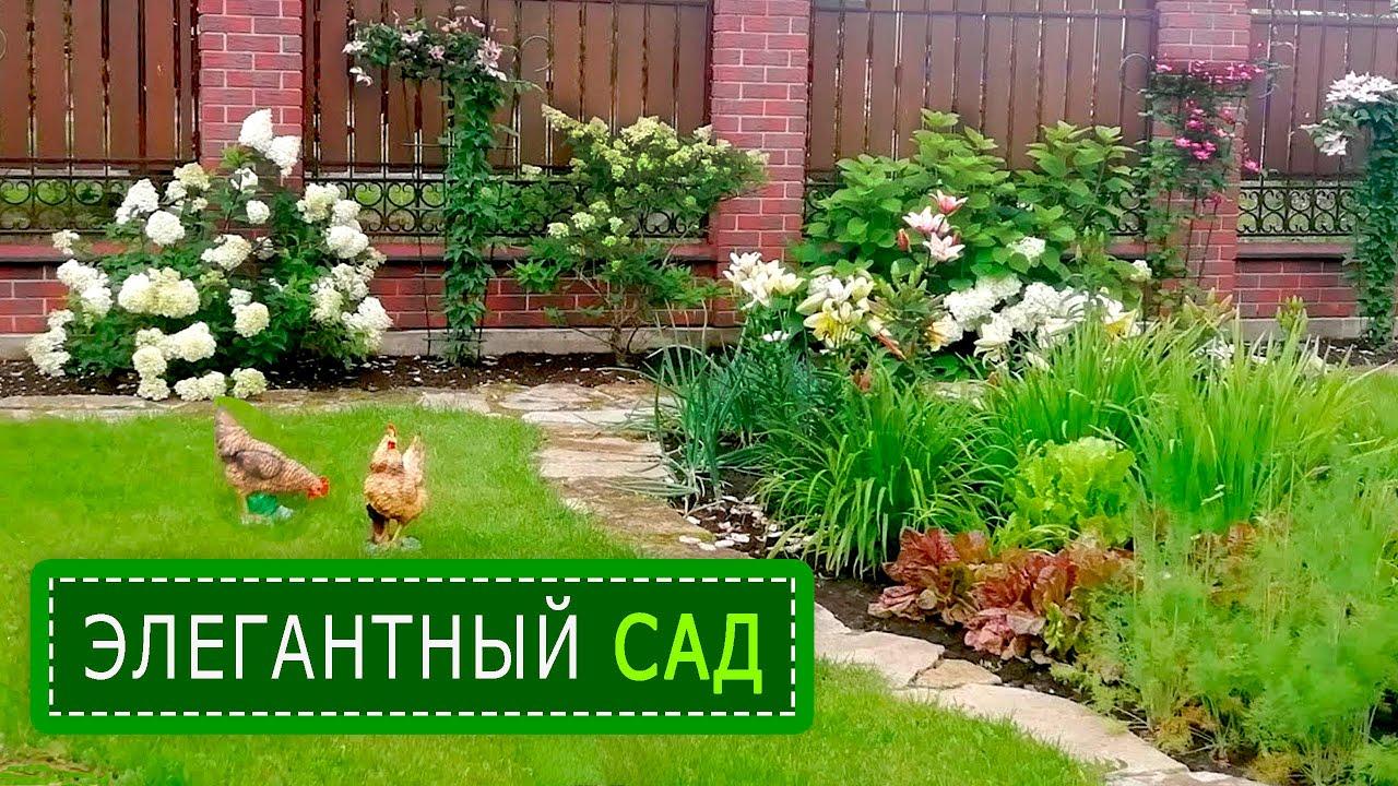 🌳🌹🌻В гостях в ИНТЕЛЛИГЕНТНОМ саду  Ирины Алексеевны.
