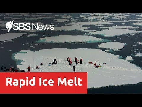 Scientist find record loss of sea ice in the arctic circle