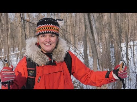 Governor General Julie Payette's  New Year's message