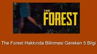 The Forest Hakkında Bilinmesi Gerekilen 5 Bilgi