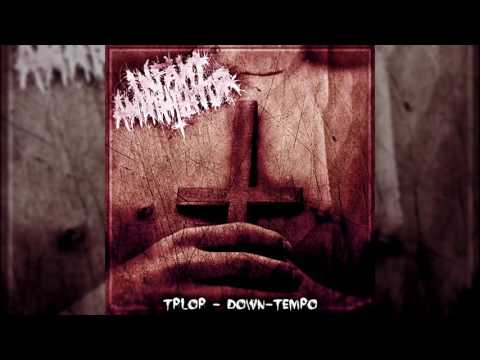 Infant Annihilator - Decapitation Fornication (Down-Tempo Version) 150% Heavier at 85% Speed