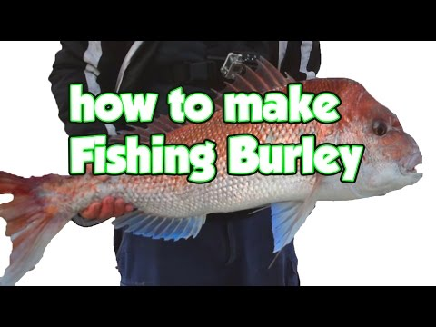 How To Make Fishing Burley  For Snapper Whiting Gar Bream Tuna Oil Lure Fish  Boat Pier Lanbased