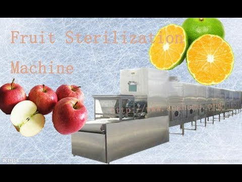 Fruit Sterilization Machine ,Industry Microwave Sterilization Equipment