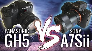 panasonic gh5 vs sony a7sii dual review