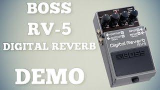 Boss Rv-5 Digital Reverb Demo