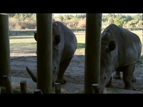 Orana Wildlife Park Christchurch
