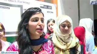 Exhibition of biotechnology posters and model competitions arranged in UCP