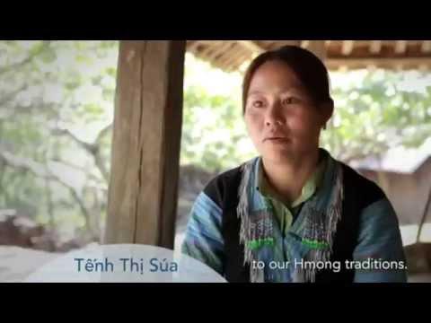 Hemp In Vietnam! Hemp Producers and Batik and Indigo traditional textiles!