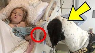 Kind kann 10 Jahre nicht laufen, bis es dieses Geschenk bekommt!