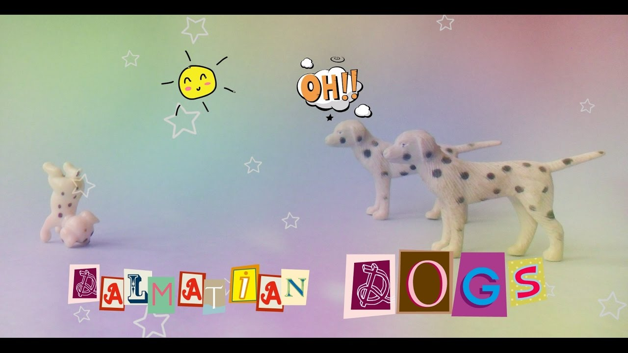 dalmatian puppy dogs meetings hikes games fun youtube