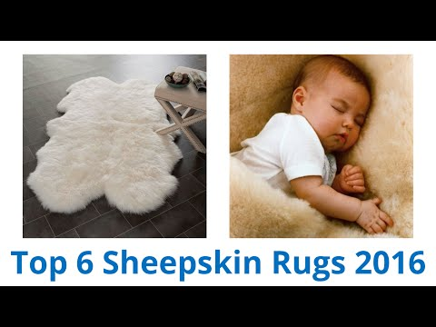 6 Best Sheepskin Rugs 2016