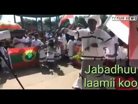 New oromoo sirbaa qabsoo dhageefadhaa 2016 jabadhuu laammii koo