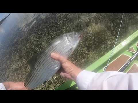 Fishing Artificials For FL KEYS Bonefish