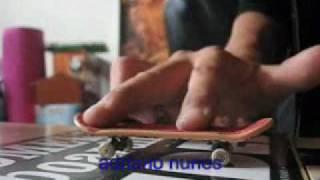 adriano nunes fingerboard return ..