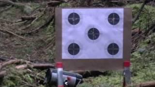 Daystate Airwolf Target Shooting.wmv