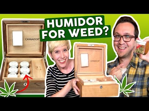 The BEST Way to Store Weed