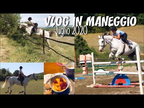 Tedesco - Lezione K03: Tiere - Parliamo di animali from YouTube · Duration:  9 minutes 5 seconds