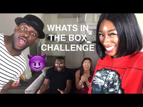 WHATS IN THE BOX CHALLENGE (RIDICULOUSLY FUNNY) FT THE PRINCE FAMILY