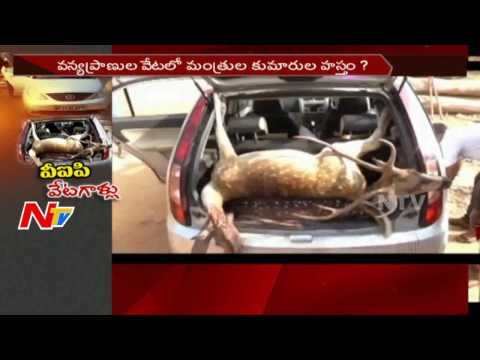 Kishan Reddy Fires on Forest Department over Wild Animals Hunting || Telangana || NTV
