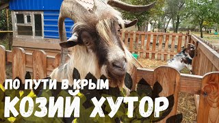 По пути в Крым. Козья ферма в Голубицкая