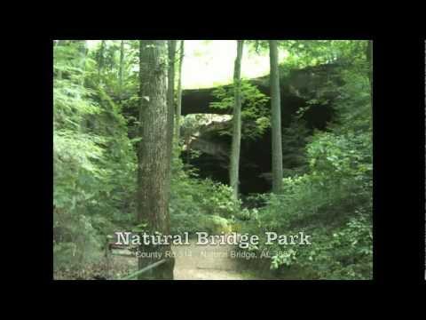 Natural Bridge Park in Natural Bridge, Alabama