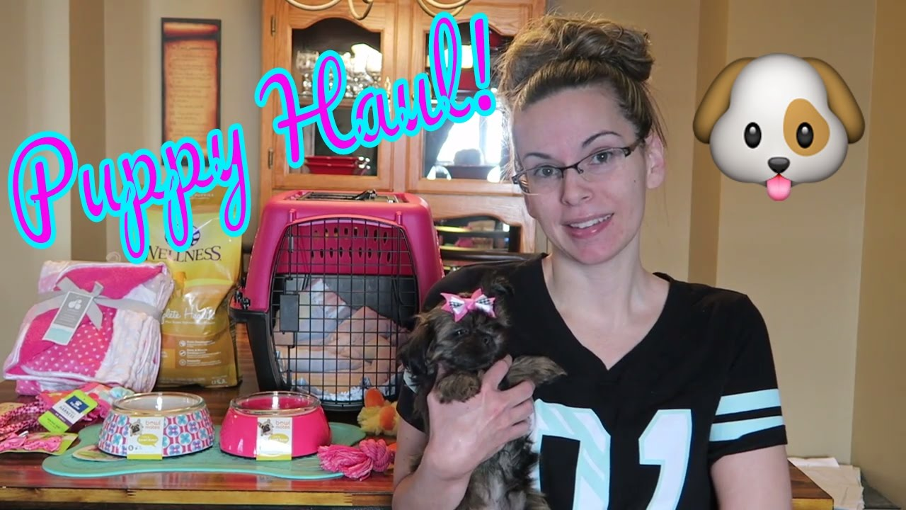 Puppy Haul What You Need For A New Puppy Youtube