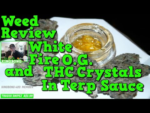 Official Cookies Sauce SnowG with Thc Crytals Live resin & White Fire O.G. Weed Review