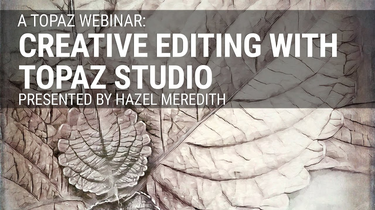 Creative Editing with Topaz Studio (Jan 2019), presented by Hazel Meredith