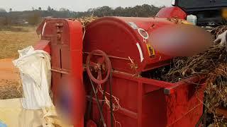 콩탈곡작업 콩탈곡하기 서리태탈곡 콩수확하기 콩타작