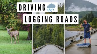 VANCOUVER ISLAND TRAVEL VLOG | Rainy Day Driving on LOGGING ROADS, BC, Canada 🌧️🌲