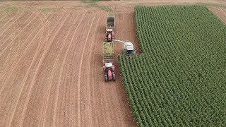 Final Corn Silage Harvest of 2019 | Packing and Covering Bunker Silos