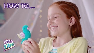 Little Live Pets S8 Light Up Birds | How to Care & Play