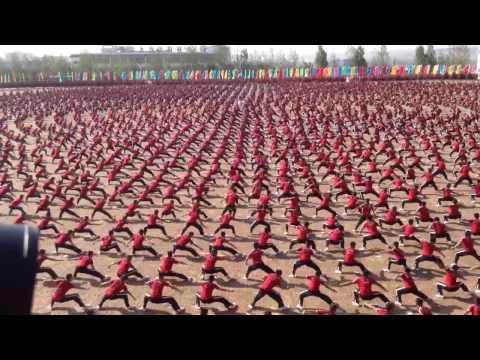 La plus grande chorégraphie d'arts martiaux du monde