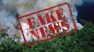 Пожары в Амазонии это Fake News!